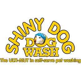 Shiny Dog Dog Wash